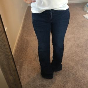 Flared Trouser Jeans